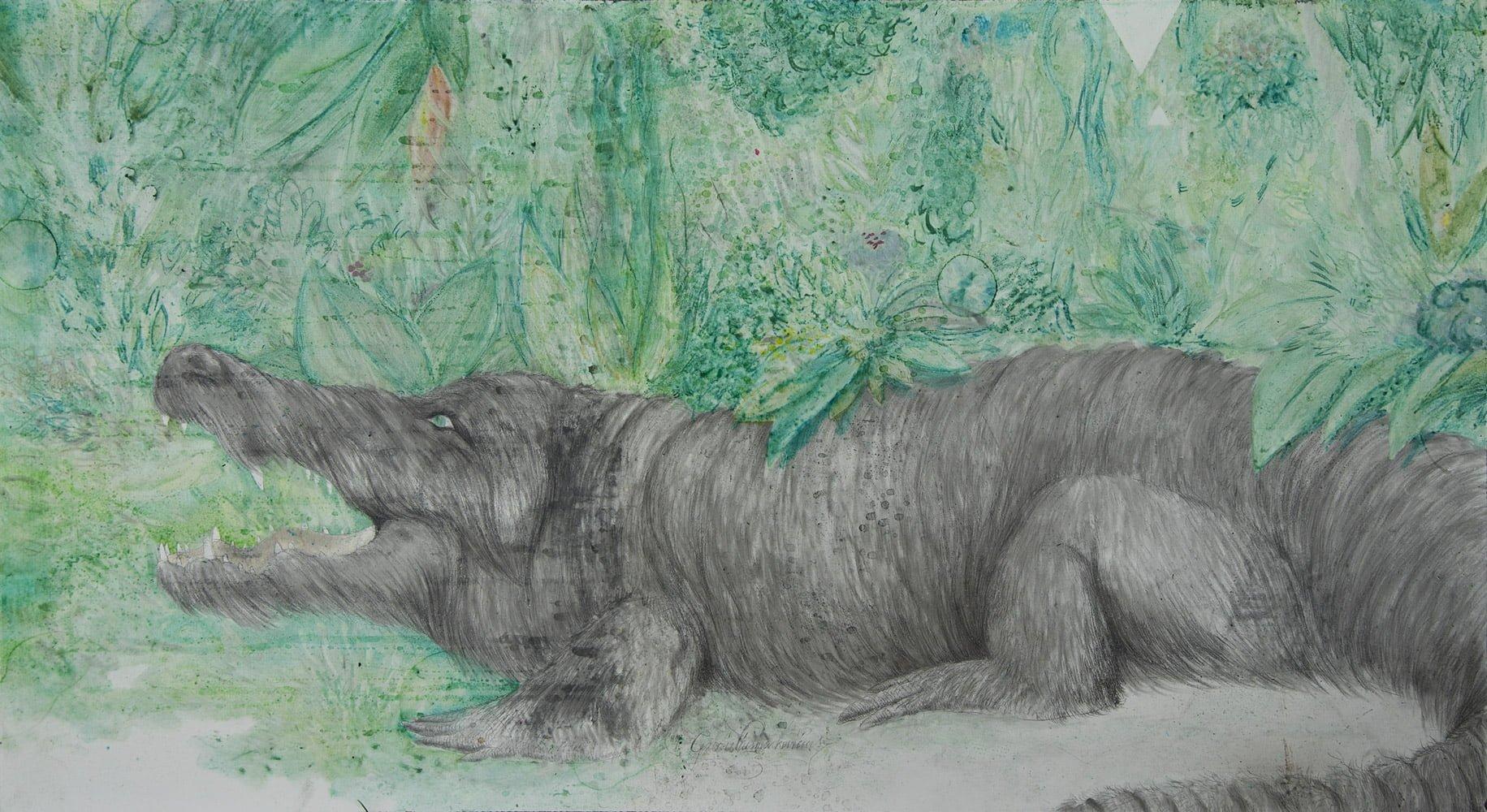 1107-krokodilasvilkas
