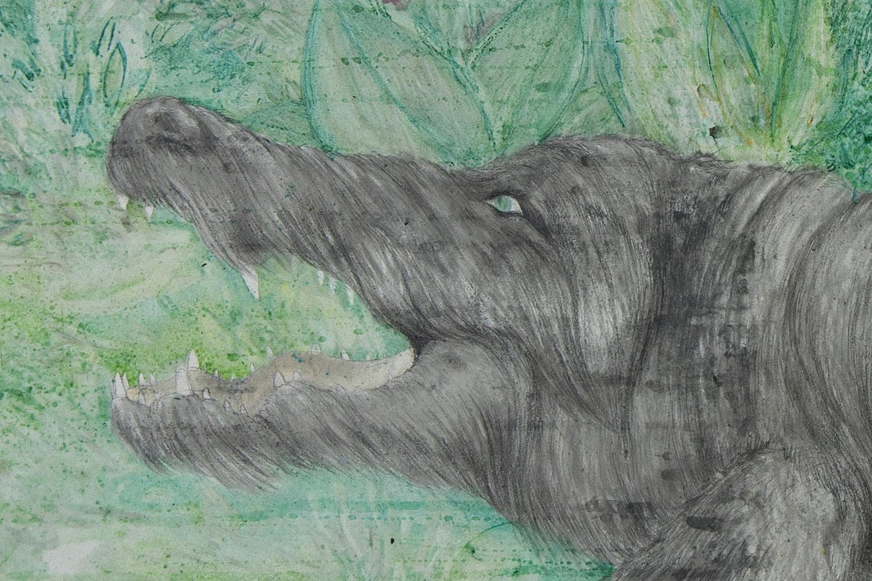 2-krokodilasvilkas